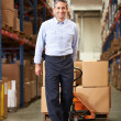 BusinessmPulling Pallet In Warehouse — Stock Photo #36835655