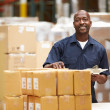 Worker In Warehouse Preparing Goods For Dispatch — Stockfoto