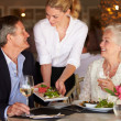 Waitress Serving Food To Senior Couple In Restaurant — Stock Photo