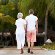 Stock Photo: Rear View Of Senior Couple Walking On Wooden Jetty