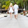 Rear View Of Couple Walking On Wooden Jetty — Stock fotografie