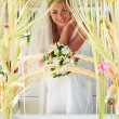 Stock Photo: Bride Sitting Under Decorated Canopy At Wedding
