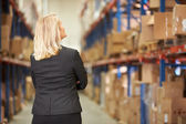 Rear View Of Female Manager In Warehouse — Stock Photo
