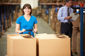 Female Worker Pulling Pallet In Warehouse — Stock Photo
