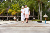 Senior Couple Walking On Wooden Jetty — Photo
