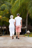 Rear View Of Senior Couple Walking On Wooden Jetty — Stok fotoğraf