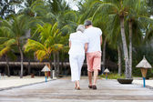 Rear View Of Senior Couple Walking On Wooden Jetty — Foto Stock