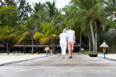 Rear View Of Senior Couple Walking On Wooden Jetty — 图库照片