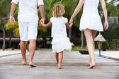 Rear View Of Family Walking On Wooden Jetty — Foto Stock
