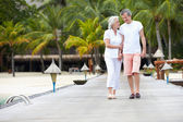 Senior Couple Walking On Wooden Jetty — Stock fotografie