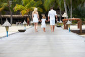 Rear View Of Family Walking On Wooden Jetty — 图库照片