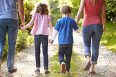 Family Walking In Countryside — Stock Photo