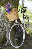 Old Fashioned Bicycle — Stock Photo