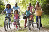 Family On Cycle Ride — Stok fotoğraf