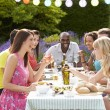 Friends Having Outdoor Barbeque — Stock Photo #48301633