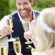 Friends Proposing Champagne Toast — Stock Photo #48301777