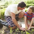 Father And Son Planting — Stock Photo #48302223