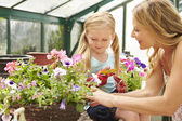 Mother And Daughter Growing Plants — Stock Photo