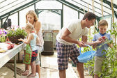 Family Working Together In Greenhouse — Stock Photo