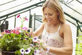 Woman Growing Plants — Stock Photo