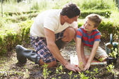 Father And Son Planting — Foto Stock
