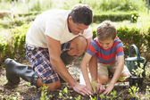 Father And Son Planting — 图库照片