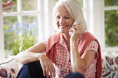 Woman At Home Talking On Phone — Stock Photo