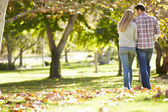 Rear View Of Romantic Couple Walking Through Autumn Woodland — Stockfoto
