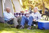 Two Senior Men Relaxing — Stock Photo