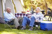 Two Senior Men Relaxing — Stock Photo