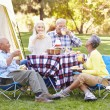 Two Senior Couples Enjoying Camping Holiday — Stock Photo #48460107