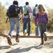 Rear View Of Family Hiking In Countryside Wearing Backpacks — Stock Photo #48460459