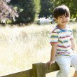 Asian Boy Sitting On Fence In Countryside — Stock Photo #48460475