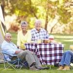 Two Senior Couples Enjoying Camping Holiday — Stock Photo #48460897