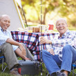 Two Senior Men On Camping Holiday — Stock Photo #48461429