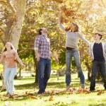 Rear View Of Family Walking Through Autumn Woodland — Stock Photo #48461737