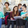 Group Of High School Students — Stock Photo #48461949