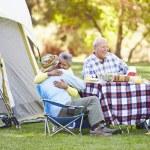 Two Senior Couples Enjoying Camping Holiday — Stock Photo #48462423