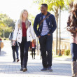 Students Walking Outdoors On University Campus — Stock Photo #48462687