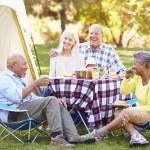 Two Senior Couples Enjoying Camping Holiday — Stock Photo #48463137