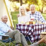 Two Senior Couples Enjoying Camping Holiday — Stock Photo #48463271