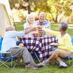 Two Senior Couples Enjoying Camping Holiday — Stock Photo #48463599