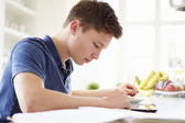 Teenage Boy Studying — Stock Photo