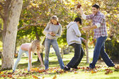 Family Throwing Autumn Leaves In The Air — Stock Photo