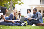 Group Of University Students Working Outside Together — Stock Photo