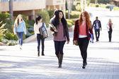 Female Students Walking Outdoors On University Campus — Stock Photo