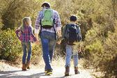 Zadní pohled na otce a dětí v přírodě — Stock fotografie