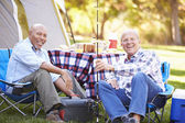 Two Senior Men On Camping Holiday — Stock Photo