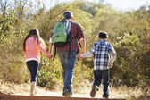 Rear View Of Father And Children Hiking In Countryside — Stock Photo