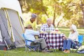 Two Senior Couples Enjoying Camping Holiday — Stock Photo